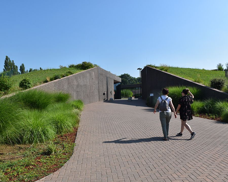 Semi-intensive green roof
